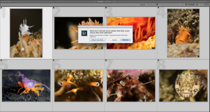 "After importing my images, I flag all the ""throw-away"" images, select them all, and ""Delete From Disk."""