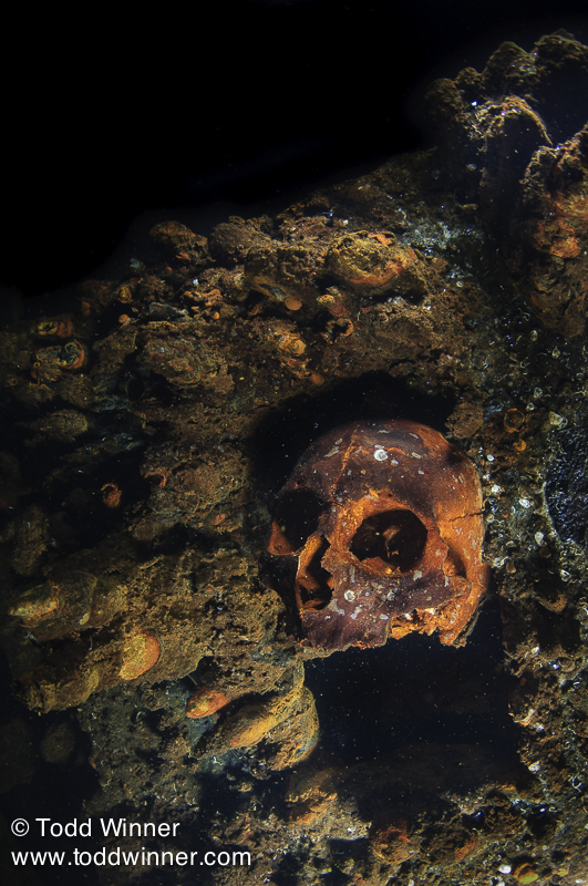Eerie reminder that not everyone made it out alive. Yamagiri Maru, Truk Lagoon